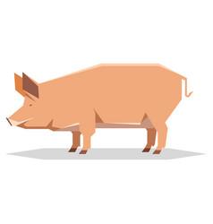 flat geometric tamworth pig vector image