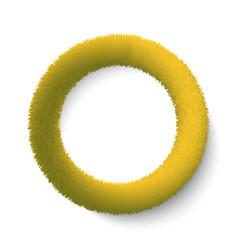 fluffy hair ring vector image