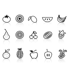 fruit outline icons set vector image