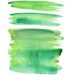 green paint strokes vector image