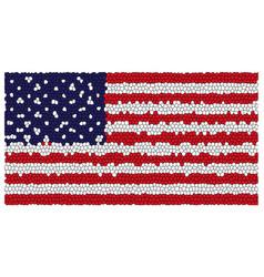 national flag vector image