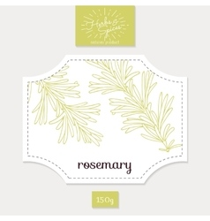 Product sticker with hand drawn rosemary leaves vector image