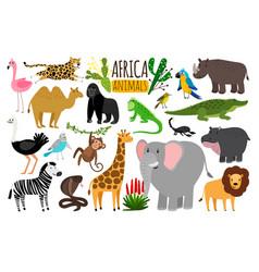 african animals various wildlife animals of vector image