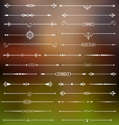Calligraphic dividers and page decor vector image