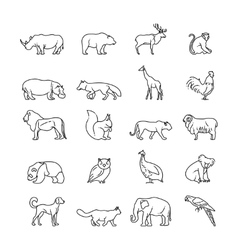 Animals thin line icons vector image