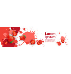 abstract paint splash and fruits strawberry set vector image