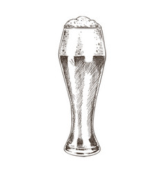 beer poured in glass sketch vector image
