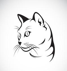 Cat face design vector image
