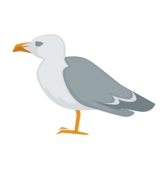 Colorful sea gull bird vector