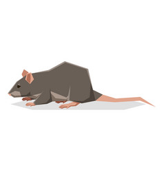 flat geometric rat vector image