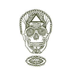 hand drawn sketch of scull on vector image