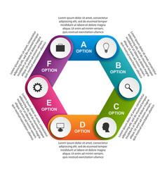 hexagon options infographics template vector image