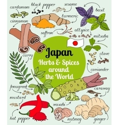 Japan herbs and spices vector image