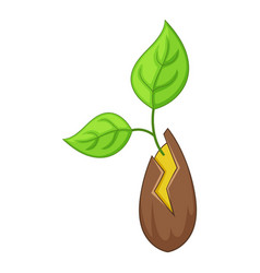 seed sprouting icon cartoon style vector image