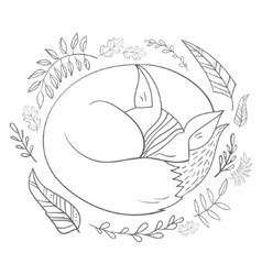 Sleeping fox grey line vector