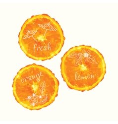 watercolor orange slice circles hand drawn doodle vector image