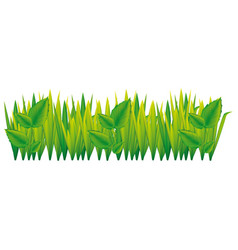 green grass with leaves icon vector image vector image