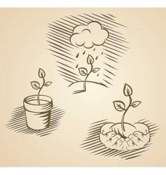 vector plant concepts vector image vector image