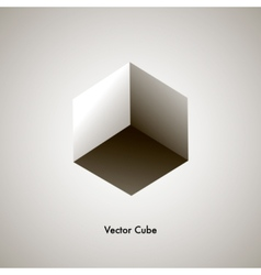 grayscale cube vector image