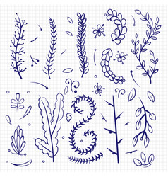hand drawn doodle branches and decorative elements vector image