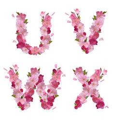 Spring alphabet with cherry flowers UVWX vector image vector image