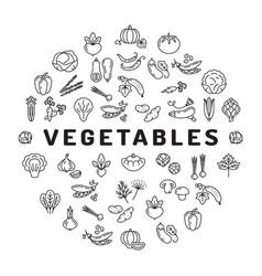vegetable icon circle infographics mega vector image vector image