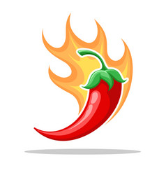 Chilli fire pepper vector