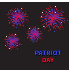 Fireworks night dark sky Patriot day vector image