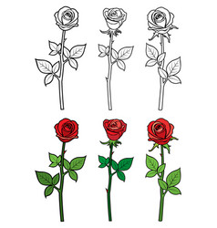 hand drawn outline and red roses - flowers vector image