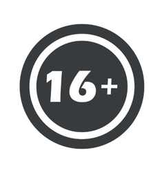 Round black 16 plus sign vector image