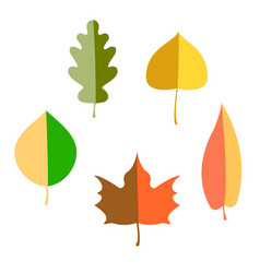 Set of autumn leaves flat vector
