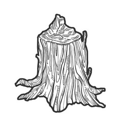 Stump made beaver sketch engraving vector