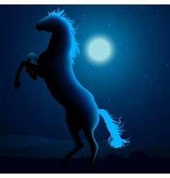 Horse Silhouetted In Blue Moon Light vector image vector image