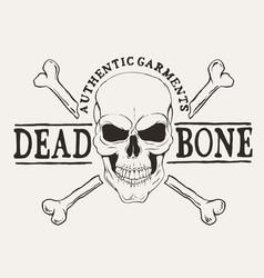 dead bone skull vector image