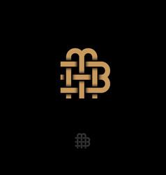 M b letters monogram gold lines vector