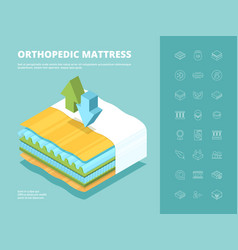 mattress orthopedic comfortable multilayered bed vector image