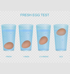 Realistic 3d detailed fresh egg test concept card vector