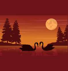 Silhouette of swan at sunset on river vector