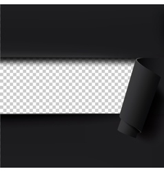 Black torn paper background with empty space for vector image vector image
