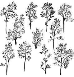 set of different spring trees vector image