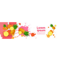 Abstract paint splash and fruits pineapple set vector