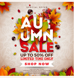 autumn sale design with falling leaves and vector image