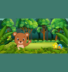 baby bear in the forest vector image