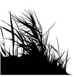 Bunch grass silhouette vector