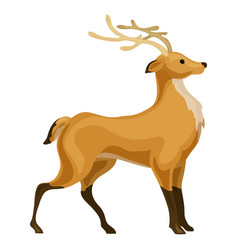 deer icon cartoon style vector image