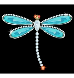 Dragonfly-brooch vector image