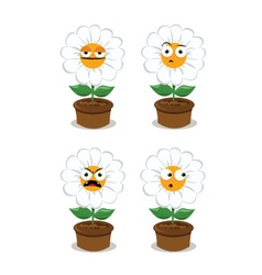 Funny daisy making faces vector image