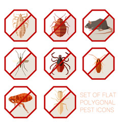 Set of flat polygonal signs of pest icons vector
