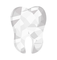 teeth emblem isolated icon vector image