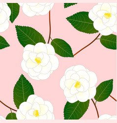 white camellia flower on pink background vector image vector image
